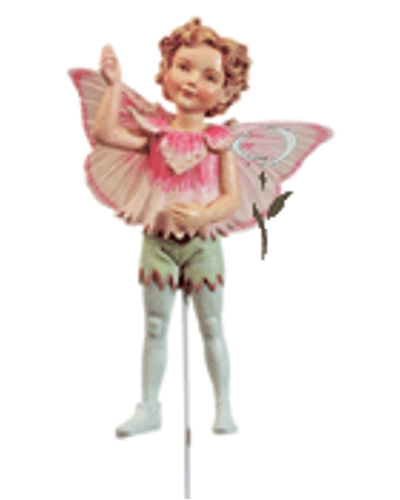 Flower Fairy Anjer jongen
