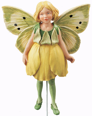 Flower Fairy Boterbloem