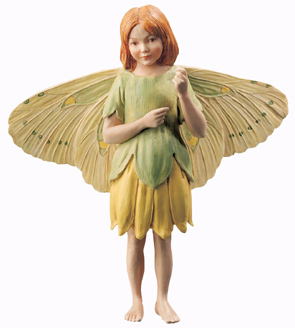 Flower Fairy Speenkruid