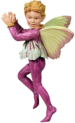 Flower Fairy Krokusjongen