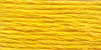 Venus borduurgaren, kleur 2024