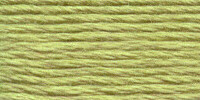 Venus borduurgaren, kleur 2580