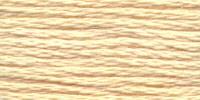 Venus borduurgaren, kleur 2641