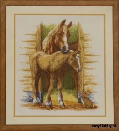 Paard met veulen