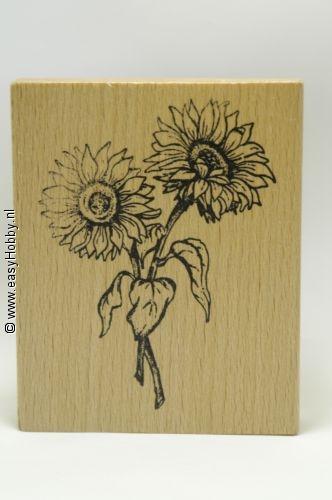 Stempel, Twee zonnebloemen