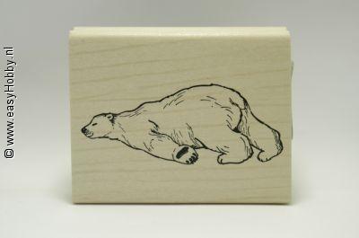 Stempel, Slapende ijsbeer