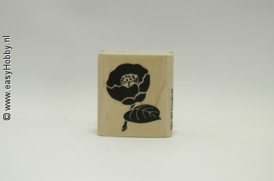 Stempel, Bloem Camellia-02